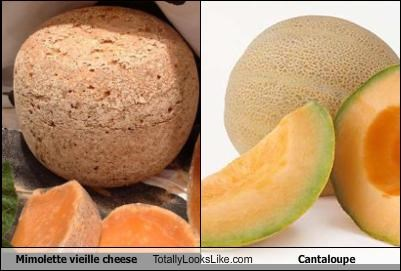 Mimolette Vieille Cheese Totally Looks Like Cantaloupe Cheezburger Funny Memes Funny Pictures Sounds perfect wahhhh, i don't wanna. mimolette vieille cheese totally looks