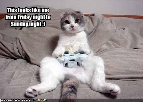 This Looks Like Me From Friday Night To Sunday Night Cheezburger Funny Memes Funny Pictures