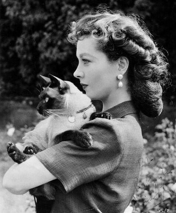 The story of 6 historical cat ladies