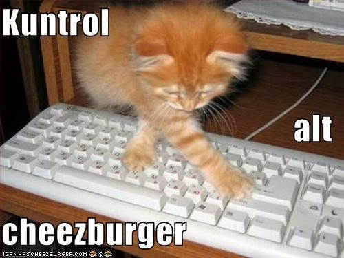Cheezburger Image 2153409792