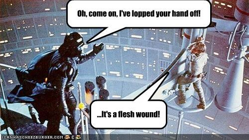 ...It's a flesh wound! Oh, come on, I've lopped your hand off!