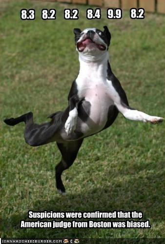 boston terrier dance gymnastics judge performance - 2155663616