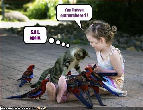 Little Girl is definitely in the Cat-bird seat.
