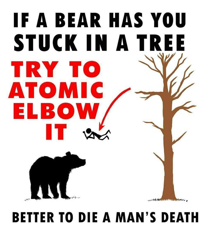 Picture of a stick figure person jumping for a tree towards a bear - cover photo for a list of funny comics on how to survive a bear attack