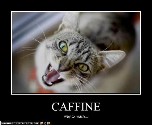 CAFFINE way to much...