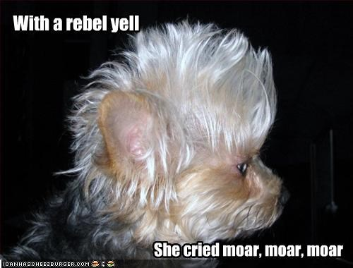 With a rebel yell She cried moar, moar, moar