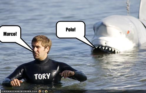 mythbusters,shark,tory belleci,TV