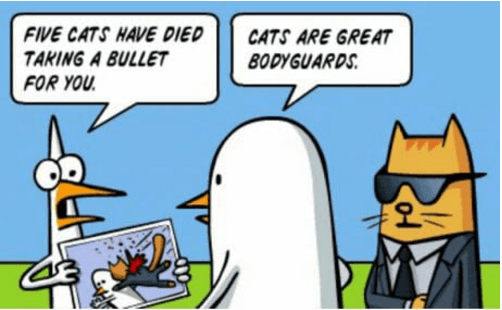 Picture of a cartoon of two ducks talking and a cat as a secret service guard - cover photo to a comic about how to train a cat