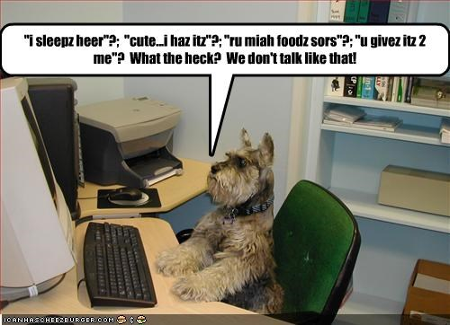 computer desk grammar lolspeak schnauzer speak speech talking well spoken