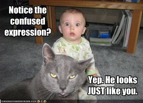 baby confused insult mean - 2172457728