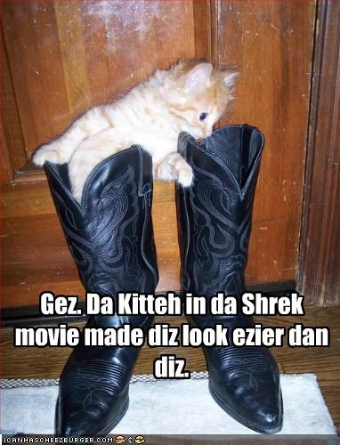 boots,cute,kitten,movies