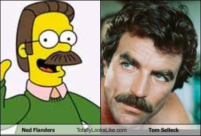 Ned Flanders Totally Looks Like Tom Selleck Cheezburger Funny