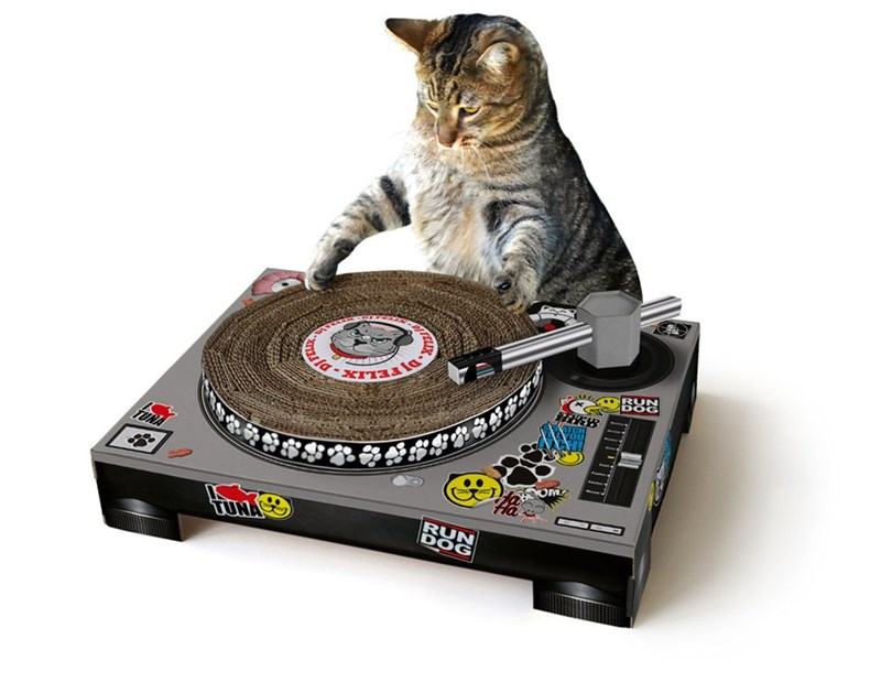 Cute picture of a cat that has an awesome scratching post record turn table.