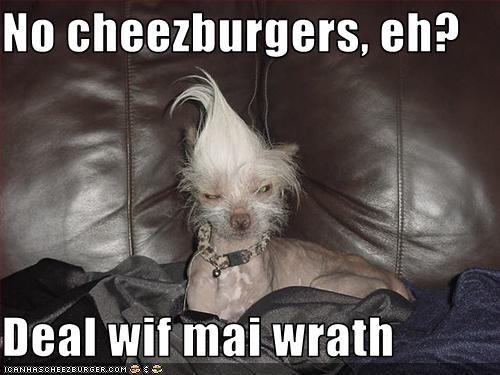 Cheezburger Image 2181686528