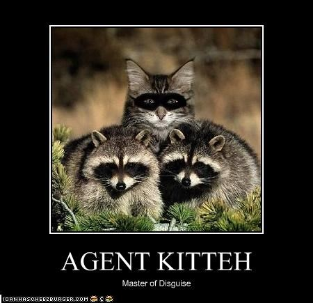 AGENT KITTEH Master of Disguise
