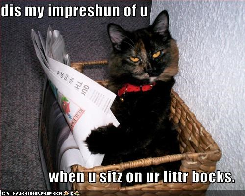 impression litterbox look a like - 2184284416