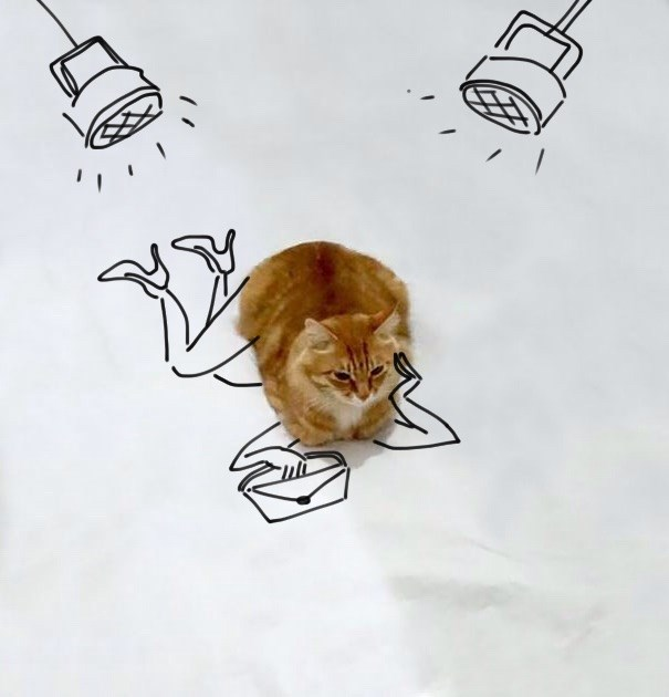 List of funny cat doodles - cover image of a cat on paper with lights and woman drawn under him.