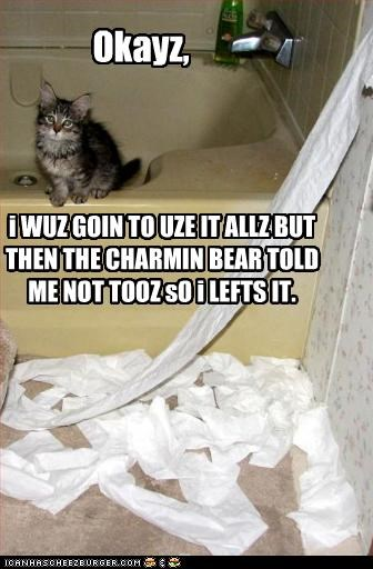 i WUZ GOIN TO UZE IT ALLZ BUT THEN THE CHARMIN BEAR TOLD ME NOT TOOZ sO i LEFTS IT. Okayz,