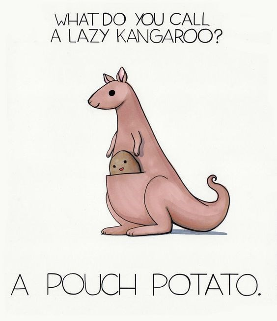 10 illustrated puns about animals - Cover image of a lazy kangaroo called a pouch potato