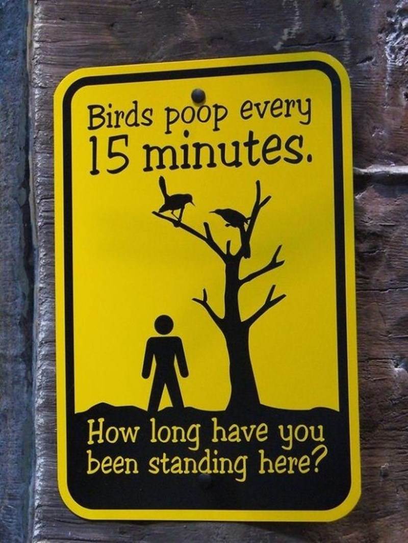 Funny list article of unbelievable zoo signs - Cover image of sign saying that birds poop every 20 minutes and questioning how long have you been standing there.