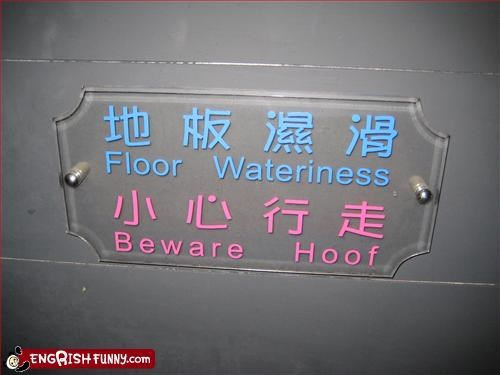 beware,floor,g rated,hoof,water