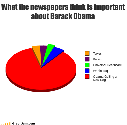 bailout,barack obama,dogs,healthcare,importance,iraq,newspapers,taxes,war