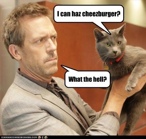 Cheezburger Image 2200264960