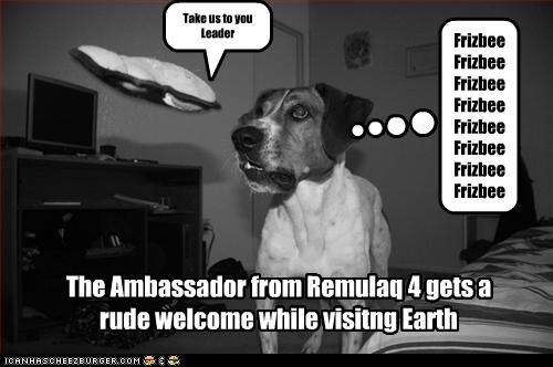 The Ambassador from Remulaq 4 gets a rude welcome while visitng Earth Take us to you Leader Frizbee Frizbee Frizbee Frizbee Frizbee Frizbee Frizbee Frizbee