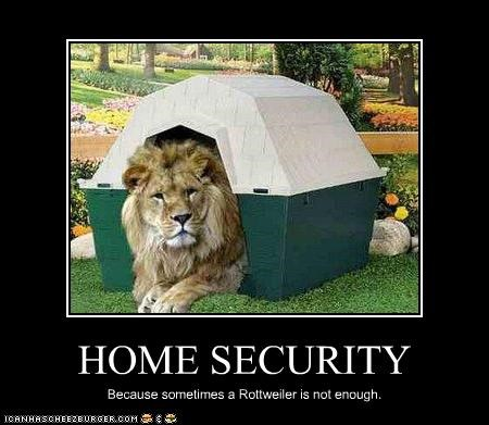 lollions security system