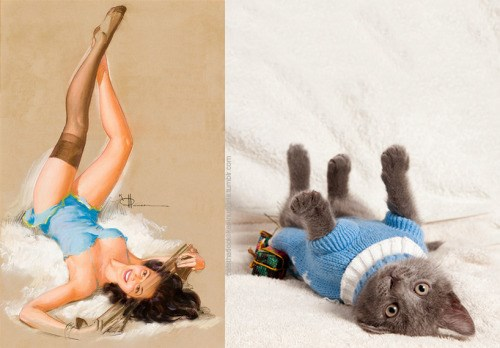 19 cats that look like pin up girls - cover graphic of pin-up girl next to cat dressed in similar outfit and striking the same pose.