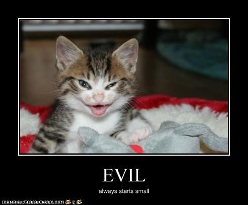 Evil Cheezburger Funny Memes Funny Pictures