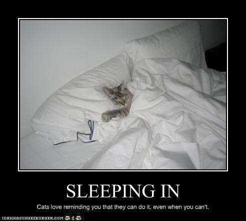 bed mean nap