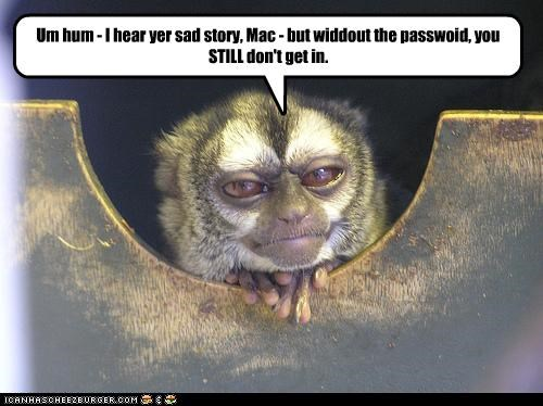 Um Hum I Hear Yer Sad Story Mac But Widdout The Passwoid You Still Don T Get In Cheezburger Funny Memes Funny Pictures