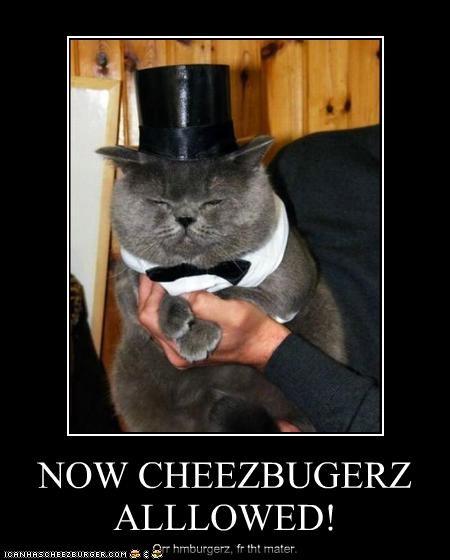 Cheezburger Image 2224304896