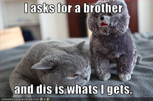 brother do not want happycat toy - 2225016576