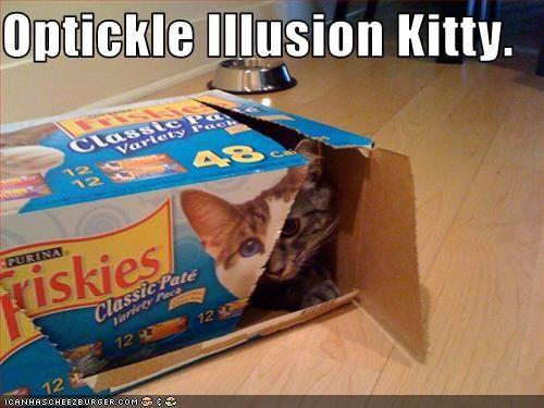 box trick - 2229617920
