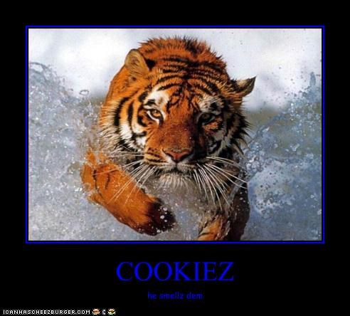 Cheezburger Image 2229824768