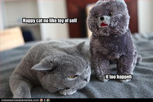Happy cat no like toy of self it too happeh