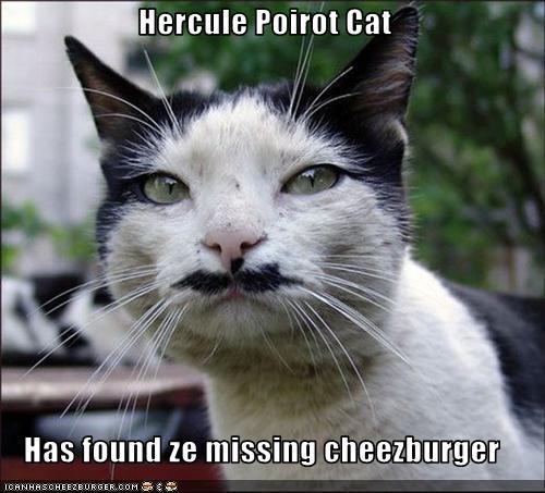 Cheezburger Image 2232249600