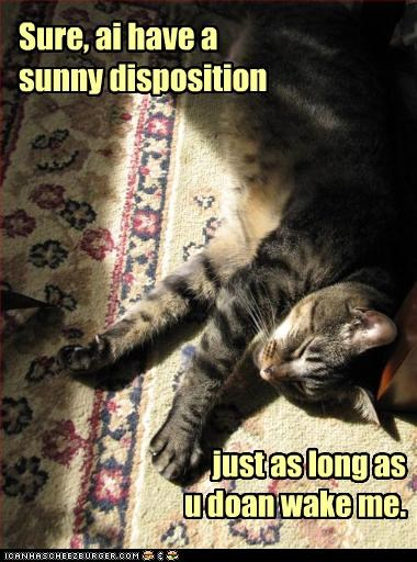 Sure, ai have a sunny disposition just as long as u doan wake me.