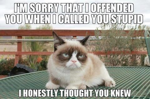 A meme of grump cat apologizing and then making a funny burn - cover meme for a list of grumpy cats best memes