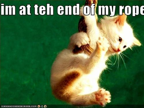 Image result for memes about being at the end of our ropes
