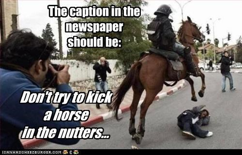 The caption in the newspaper should be: Don't try to kick a horse in the nutters...