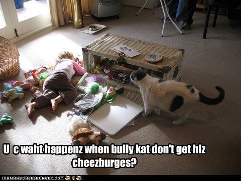 Cheezburger Image 2241939200