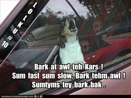 L O L K U # 10 Bark at awl teh Kars ! Sum fast sum slow, Bark tehm awl ! Sumtyms tey bark bak .