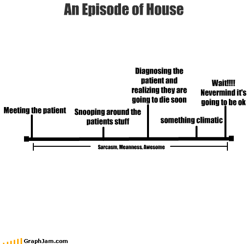 An Episode of House Meeting the patient Snooping around the patients stuff Diagnosing the patient and realizing they are going to die soon something climatic Wait!!!! Nevermind it's going to be ok Sarcasm, Meanness, Awesome