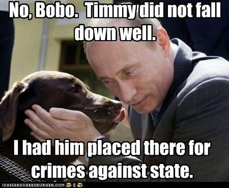 No, Bobo. Timmy did not fall down well. I had him placed there for crimes against state.