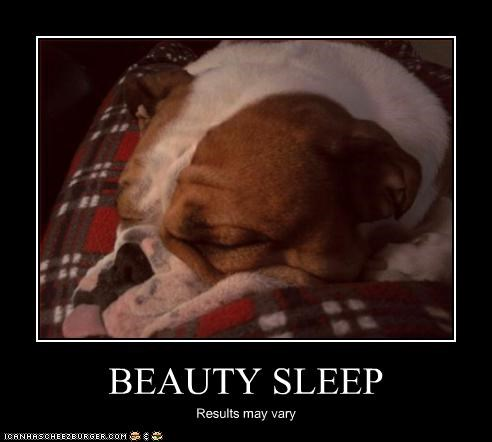beautiful,bulldog,sleep,ugly