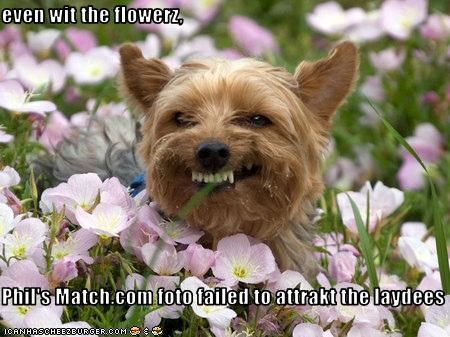 flowers love picture relationship smile yorkshire - 2252680448