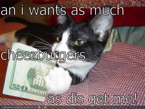 Cheezburger Image 2253478144
